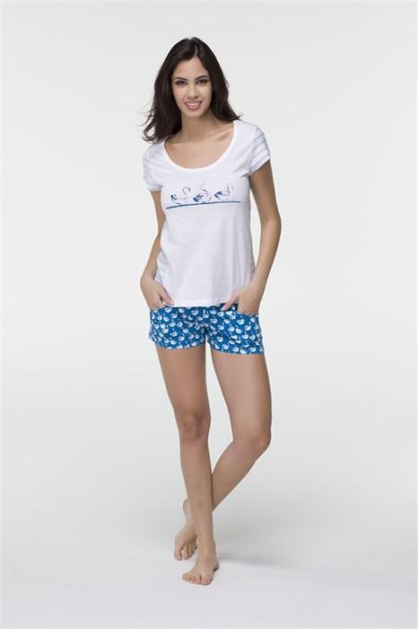 Домашний комплект футболка-шорты - фото 5509
